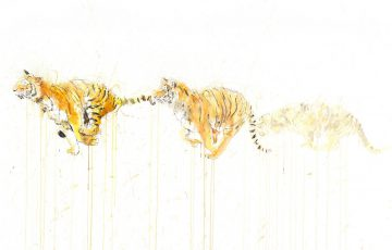 Artwork of a tiger running by Dave White